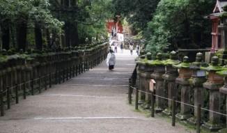 Shinto monk taking a walk in Nara park.